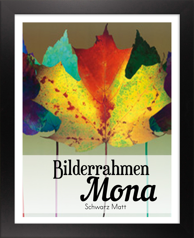 Mona 68,5 x 98,5 cm Bilderrahmen Homedeco 24 Holzwerkstoff Wahl Farbe Verglasung
